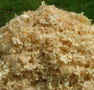 Untreated Shavings